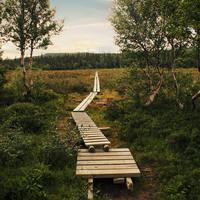 凍る冬が来る前に。スウェーデンでハイキング【王様の散歩道(KUNGSLEDEN)】