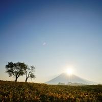 絶景、グルメ、温泉…。外国人に人気のリゾート地【ニセコ】で大人の秋冬旅