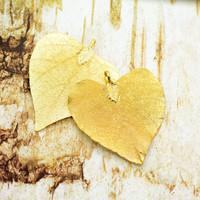 おうちのちょっとしたインテリアにも。秋を彩る枯れ葉アートを作ってみない?