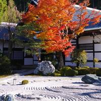 自分を見つめなおす旅へ。京都の禅寺で過ごす「枯山水」の楽しみ方