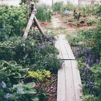 「ナチュラルガーデン」のある風景。自然体だけど美しい、お庭を素敵に見せるコツ