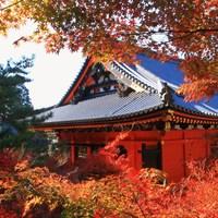 錦絵のように素晴らしい景色を訪れませんか? 京都市の紅葉名所~伏見・山科編~