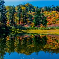 秋の彩りに魅せられて ~北海道の紅葉名所/大雪山・層雲峡近郊編~