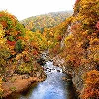 ちょっと早めの紅葉狩りへ。見どころたくさん『秋の北海道』をご紹介します♪