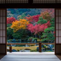 錦絵のように素晴らしい景色を訪れませんか? 京都の紅葉名所~嵐山編~