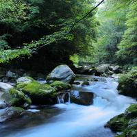 忙しい毎日から解放されよう!緑とせせらぎに癒される全国の【森林浴スポット】11選