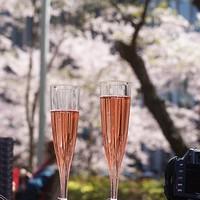 お花見やピクニックの持ち寄りにぴったり♪おしゃれな春の『おつまみ』レシピ