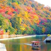 錦絵のように素晴らしい景色を訪れませんか? 京都の紅葉名所~宇治編~