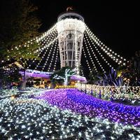 冬を彩る風物詩を観に行きませんか? 神奈川県のイルミネーションスポット10選