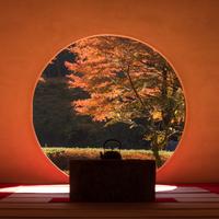 """紅葉を見に鎌倉へ。神社・寺院、カフェ、温泉…""""秋""""を感じる鎌倉日帰り旅行"""