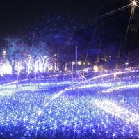 冬を彩る風物詩を観に行きませんか? 東京都のイルミネーションスポット15選