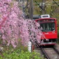 春はまったり癒し旅へ*自然豊かな《箱根》でのんびりくつろげる「露天風呂」5選