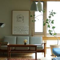 冬こそ、グリーンでお部屋を明るく!『寒さに強い観葉植物』10選&飾り方のコツ