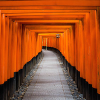素敵な新年を迎えませんか? 京都市内のオススメ初詣スポット8選