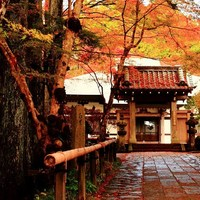 上質なお宿で癒されて。紅葉もアートも楽しめる秋におすすめ<箱根旅>