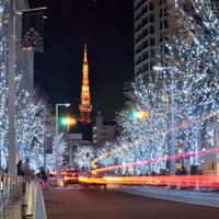 今こそ乗りたい『はとバスツアー』。家族や友人にも案内したい【東京・横浜観光編】