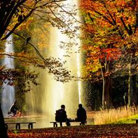 コーヒーと焼き菓子片手に、寄り道を楽しむ秋。~都内公園お散歩MAP~