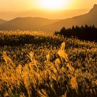 今度の休日は、日帰り登山やハイキングで自然を感じてリフレッシュ~関西編~