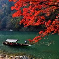 一味違う紅葉狩りをしませんか?トロッコと舟下りで楽しむ【京都・嵐山】の旅