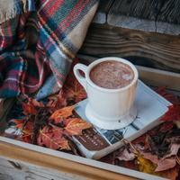 冷えた体をホッと温めて*濃厚な甘さがたまらない「ホットココア」のアレンジレシピ