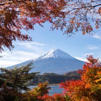 もっと知りたい富士山の魅力。≪春夏秋冬≫自然を楽しめる~富士五湖めぐり~