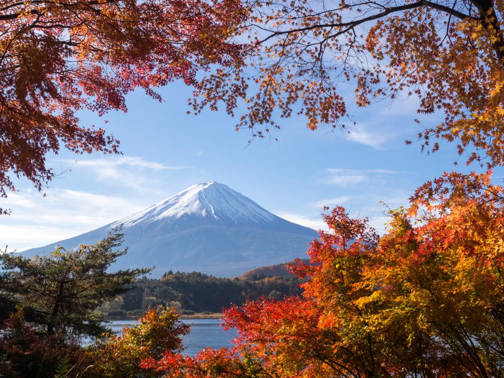 もっと知りたい富士山の魅力。≪春夏秋冬≫自然を楽しめる ...
