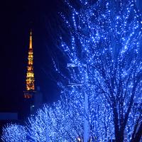 冬を彩るきらめく世界☆クリスマス気分を盛り上げるうっとり「イルミネーション」@東京