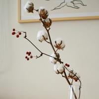 1年中ほわほわ♪作って飾って、暮らしを彩る『コットンフラワー(綿花)』の楽しみ方