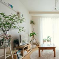 """ワンルームで""""癒しの空間づくり""""。一人暮らしの初心者さんでも扱える「植物&生花」特集"""