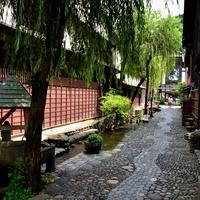 清流と名水が織りなす風景に魅せられて~岐阜県・郡上八幡で名水めぐりを楽しもう~