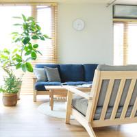 インテリアだって紫外線対策が必要!大事なお部屋や家具を日焼けから守る方法とコツ