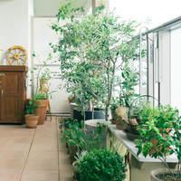 春の陽気を楽しもう。雑貨やグリーンで素敵な「ベランダインテリア」の作り方