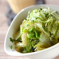 飽きない工夫が大切◎おなじみ〈葉物野菜別〉のサラダ・レシピ集