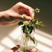 """知ればきっと暮らしが変わる。食や美で取り入れる""""自然の恵み"""""""