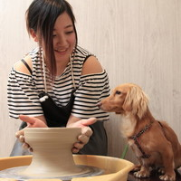 週末はワンコと一緒に出かけよう♪愛犬と遊びに行く【伊豆】のおすすめスポット