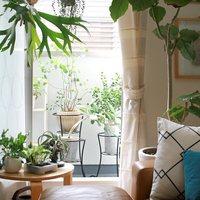 """憧れの""""窓の大きなお部屋""""に住もう!素敵なインテリアやグリーンで安らぎの空間へ"""