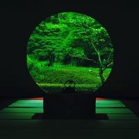 新緑の季節は鎌倉へ出かけよう。緑が香る鎌倉の神社仏閣7選