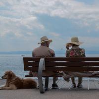 ほっこりやさしい気持ちに*人とのつながりや温かさに触れる「ハートフルな映画」5選