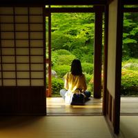見て、体験して、禅を感じる。京都のお寺めぐり