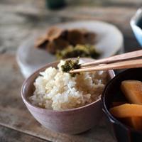 食卓にあると、つい手が伸びる母の味♪定番・郷土別「ご飯のお供」レシピ帖