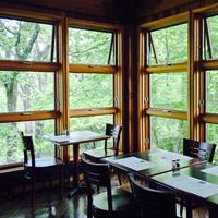 日光の老舗・和洋「レストラン」で優雅なひと時を。一度は行ってみたいおすすめ店【6選】
