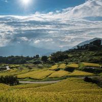 里山と水田が織りなす風景に魅せられて【日本の棚田百選/信越地方編】