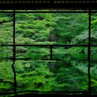 心洗われる緑。初夏の京都で「青もみじ」を訪ねる旅に出かけませんか。
