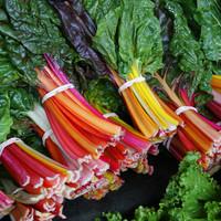 カラフルなホウレンソウ? 美しい野菜《スイスチャード》に注目!