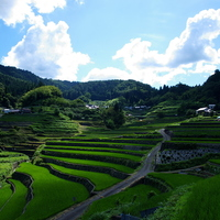 里山と水田が織りなす風景に魅せられて【日本の棚田百選/中国・四国地方編】