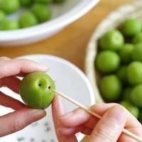 季節を楽しむ「梅しごと」おうちで簡単♪《 梅酒・梅シロップづくり》の基本とレシピ