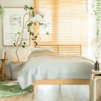 朝までぐっすり眠れてますか?じめじめ梅雨でも快適に過ごせる「寝室」づくりのアイデア集