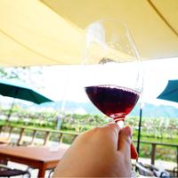 """東京から日帰りでも行ける。ワインの奥深い味わいを楽しめる""""山梨・勝沼ワイナリー""""巡り"""
