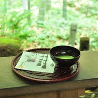 竹林のお寺『報国寺』へ。涼と静寂を愉しむ「鎌倉ふらり散歩」案内