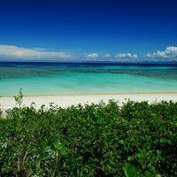 陽射しを浴びて煌めく白砂と透き通る海を求めて~沖縄でのおすすめビーチ6選~(八重山諸島編)